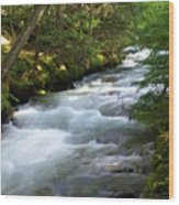 Sprague Creek Glacier National Park 2 Wood Print