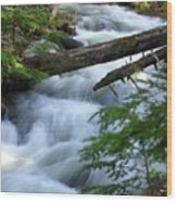 Sprague Creek Glacier National Park Wood Print