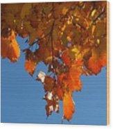 Spray Of Autumn Leaves  Wood Print