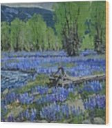 Spread Creek Lupine Wood Print
