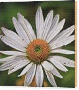 Spread Your Petals Wood Print
