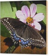 Spreading My Wings Wood Print by Trina Prenzi