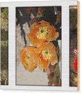 Spring - Desert Style Wood Print