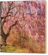 Spring - Sakura - A Beautiful Spring Day  Wood Print by Mike Savad
