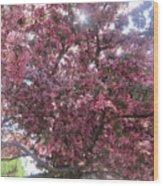 Spring 12 Wood Print