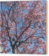 Spring 4 Wood Print