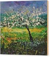 Spring 450150 Wood Print