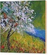 Spring 451110 Wood Print