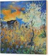Spring 67 Wood Print