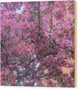 Spring 7 Wood Print