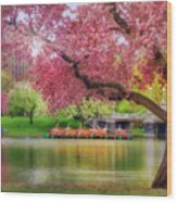 Spring Afternoon In The Boston Public Garden - Boston Swan Boats Wood Print