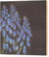 Spring. Wood Print