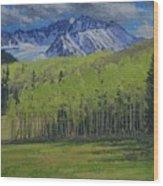 Spring Aspen Wood Print