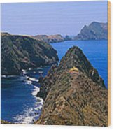 Spring At Anacapa Island, Channel Wood Print