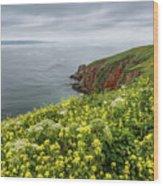Spring At Chimney Rock Wood Print