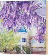 Spring At City Hall Wood Print