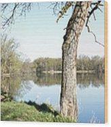 Spring At Considine Wood Print