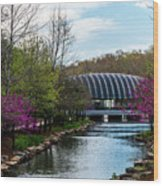 Spring At Crystal Bridges Wood Print
