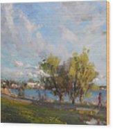 Spring At Gratwick Waterfront Park Wood Print
