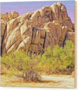 Spring At Joshua Tree Wood Print