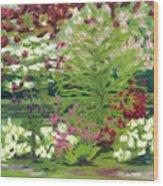 Spring At Osage Land Trust II Wood Print