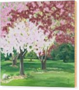 Spring At Osage Land Trust Wood Print