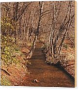 Spring At Red Rock Crossing Wood Print