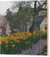 Spring At Spring Grove Wood Print