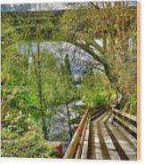 Spring At The Falls Wood Print