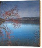 Spring At The Lake Wood Print