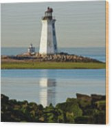 Spring At The Lighthouse Wood Print