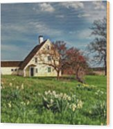Spring At The Paine House Wood Print