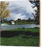 Spring At The Park Wood Print