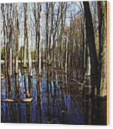 Spring At The Pond Wood Print
