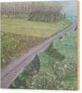 Spring At The Railroad Cut Gettysburg Wood Print