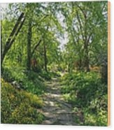 Spring At The Urban Oasis Portrait Wood Print