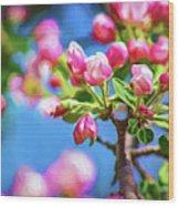 Spring Awakening 2 - Paint Wood Print