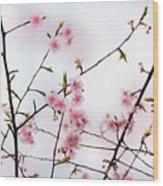 Spring Awakening Wood Print by Eena Bo
