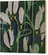 Spring Ballet Wood Print