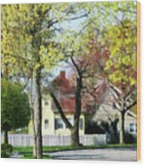 Spring Begins In The Suburbs Wood Print