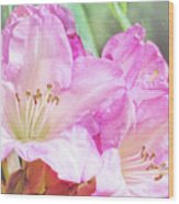 Spring Bling Wood Print
