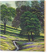 Spring Bloom Table Mountain Wood Print