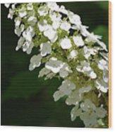 Spring Bloomers 2 Wood Print