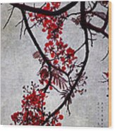 Spring Bloosom In Maldives. Flamboyant Tree II. Japanese Style Wood Print