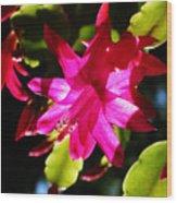 Spring Blossom 15 Wood Print