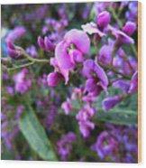 Spring Blossom 2 Wood Print