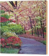 Spring Blossoms Impressions Wood Print