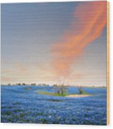 Spring Bluebonnets In Texas Wood Print