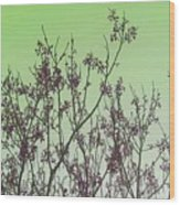 Spring Branches Mint Wood Print