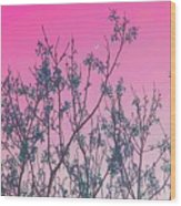 Spring Branches Rose Wood Print